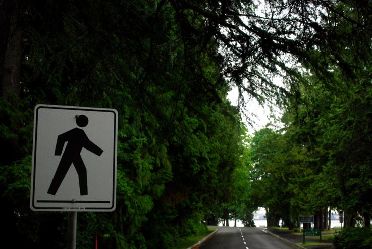 Stanley Park Vancouver, BC | Alicia Carvalho