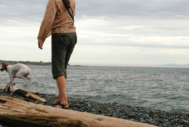 Dog on Beach, Victoria BC | Alicia Carvalho Photography