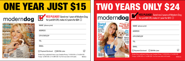 Modern Dog Magazine | Subscription Design