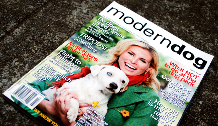 Modern Dog Magazine | Graphic Design