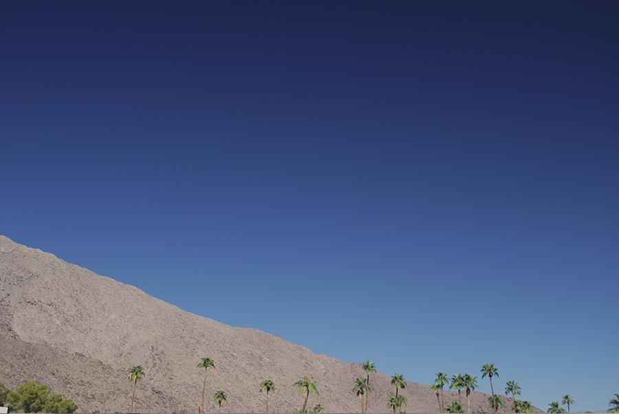 Palm Springs. Designervaca | www.alicia-carvalho.com