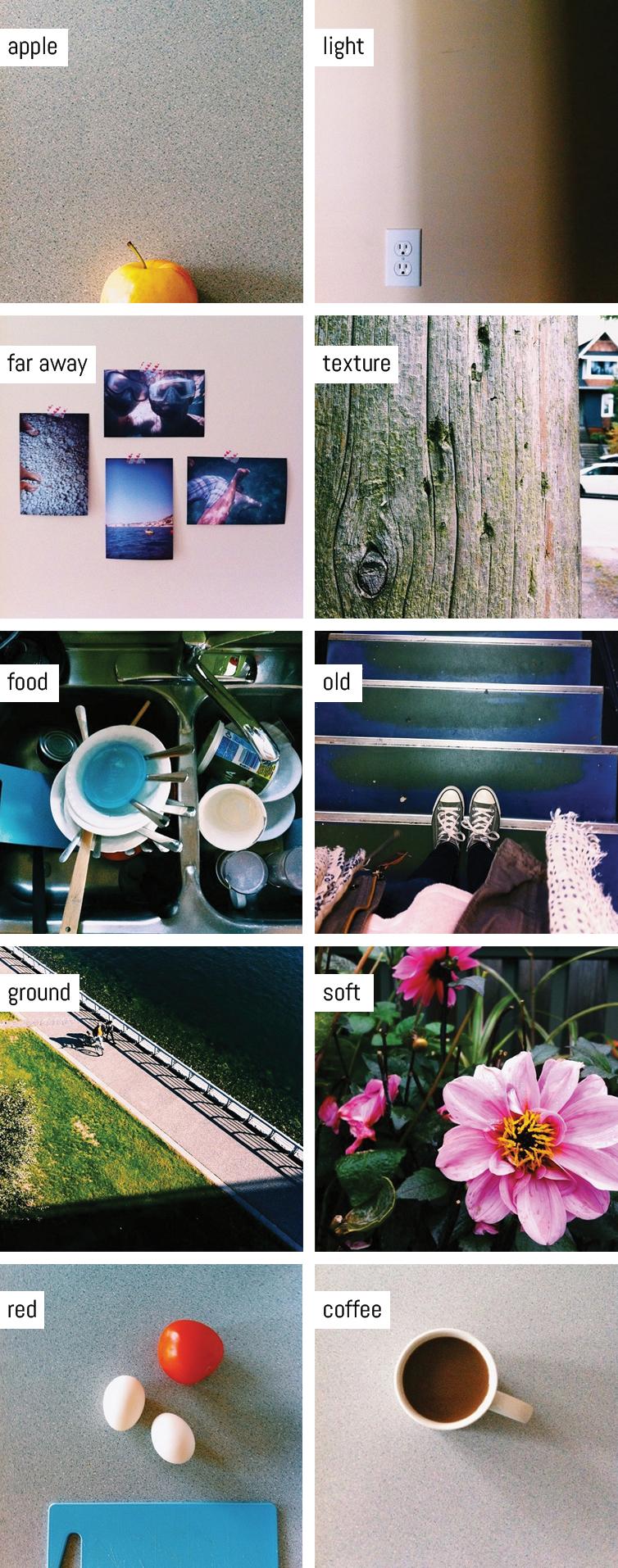 foliophoto favourites | www.alicia-carvalho.com