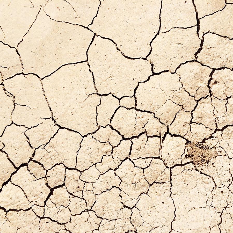 desert textures Palm Springs #designervaca  | www.alicia-carvalho.com/blog