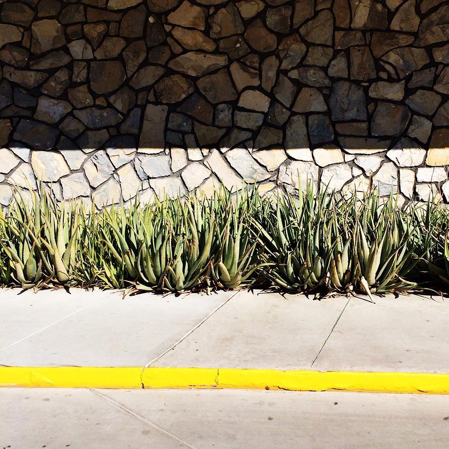 Ace Hotel Palm Springs #designervaca  | www.alicia-carvalho.com/blog