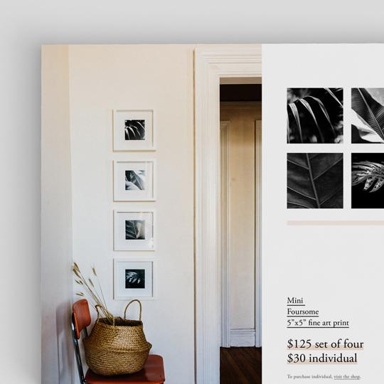 Solstice Series Fine Art Photo Print Shop Catalogue for Alexa Mazzarello   www.alicia-carvalho.com