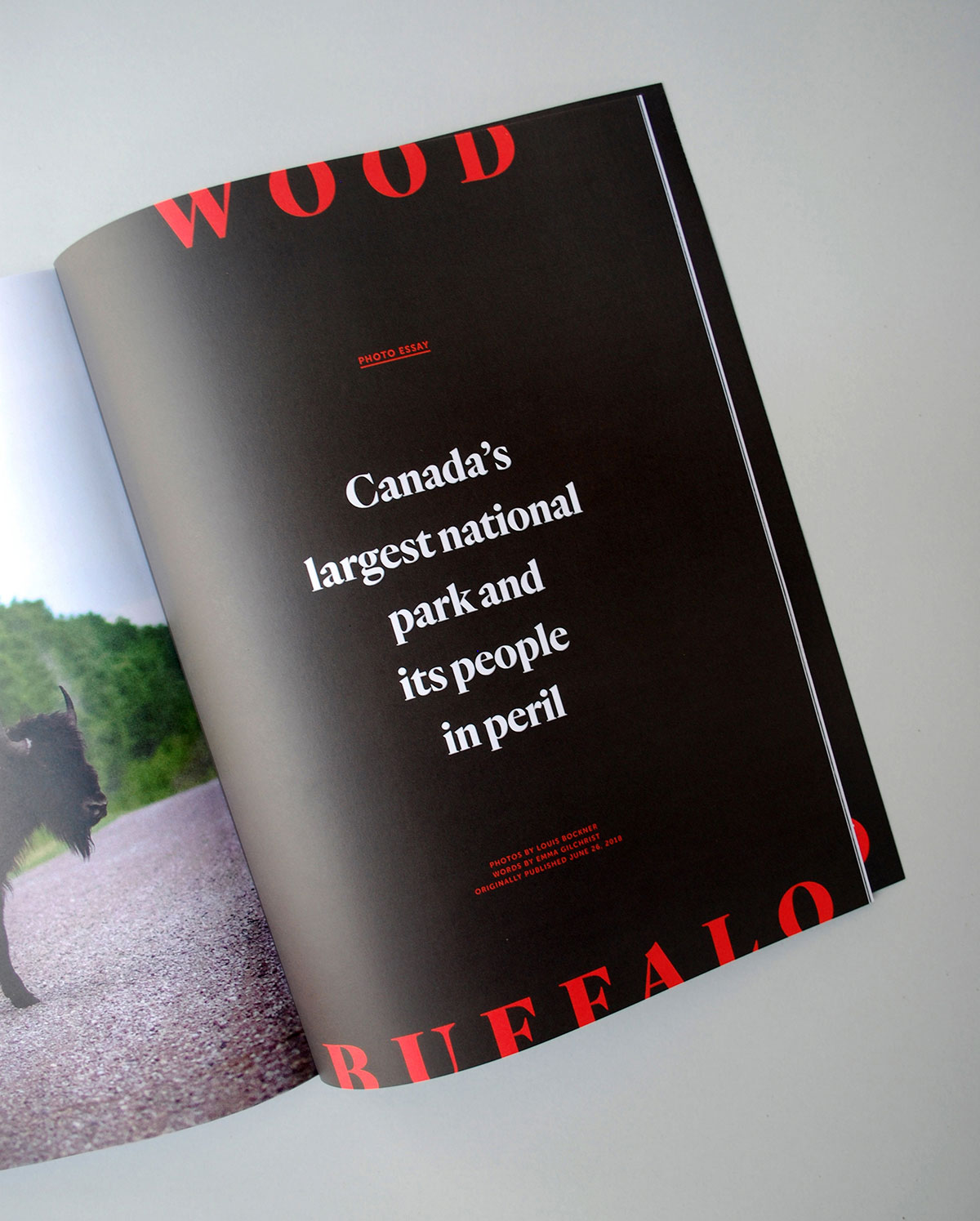 The Narwhal Magazine, photo essay introduction page, editorial print design, Wood Buffalo: Canada's largest national park and its people in peril, photos by Louis Bockner  | www.alicia-carvalho.com