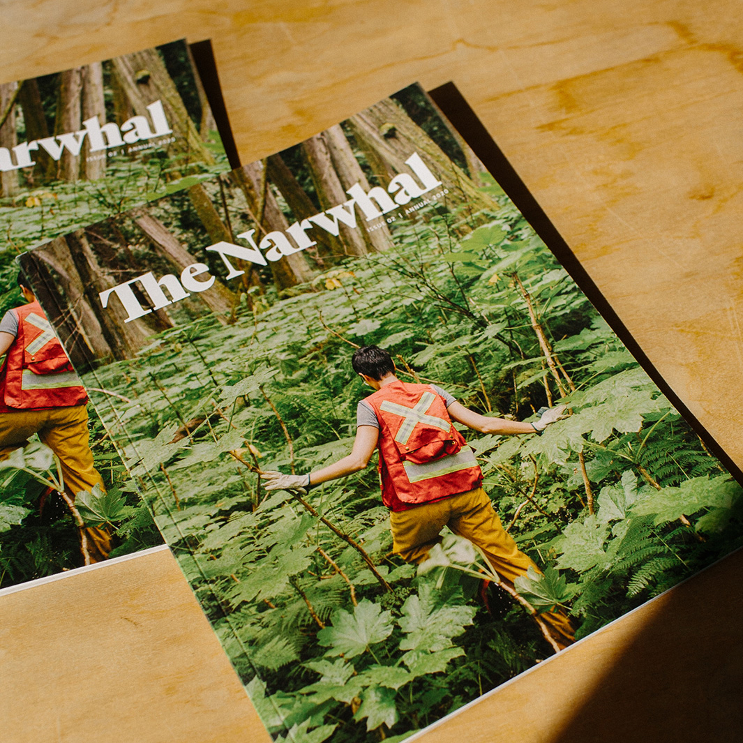 The Narwhal Magazine Issue 2 editorial print and publicatio layout design | www.alicia-carvalho.com